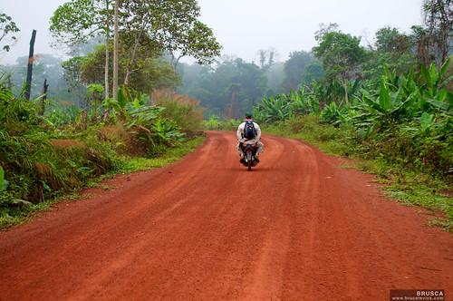 Riding the Motos to Rescue Crocodiles in Cambodia