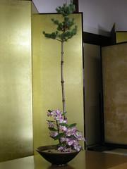 Free-form style arrangement