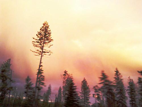 Quesnel Sunset by Karyn Ellis