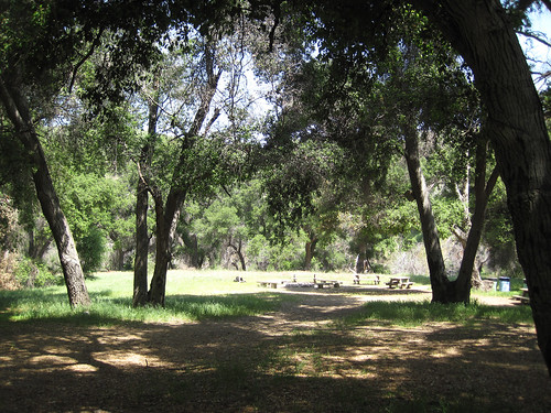 Placerita Canyon - Waterfall - 07