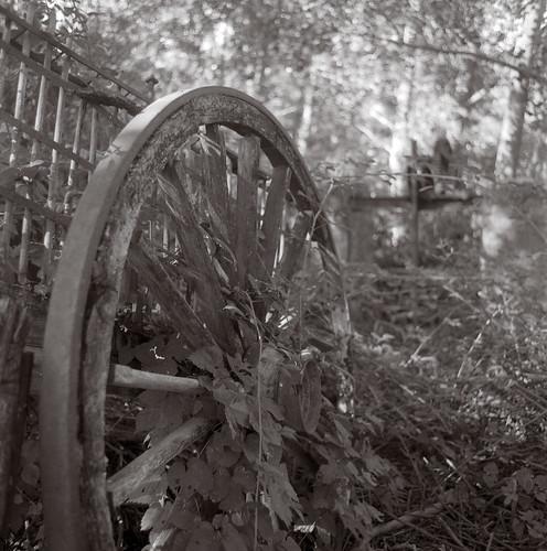 Abandoned cart. Mochales. Guadalajara.