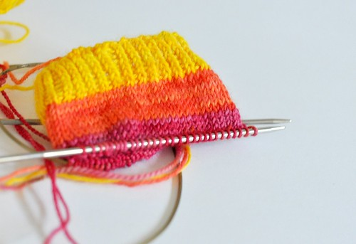 Tropical Mitts WIP