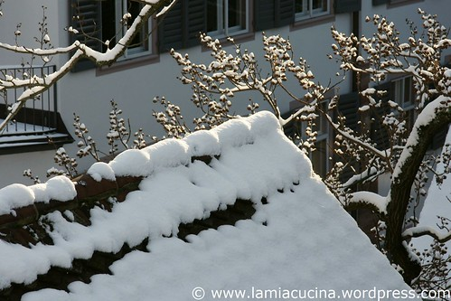 Winter 0_2010 12 02_0976