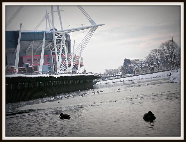 Frozen River Taff, Cardiff.