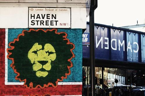 Haven Street Lion