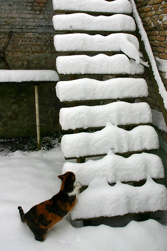 MARGOOTJE IS HAAR TRAP KWIJT // MARGOOTJE IS LOOKING FOR HER STAIRCASE