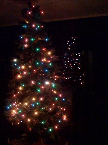 346/365 tree