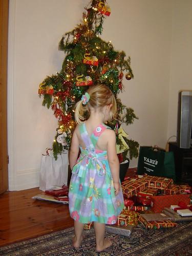 Freya surveying the Christmas loot