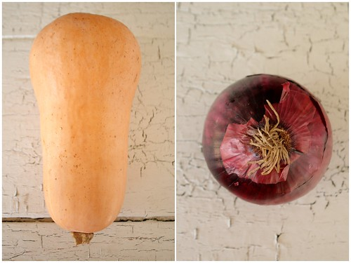 Butternut and Red Onion Diptych