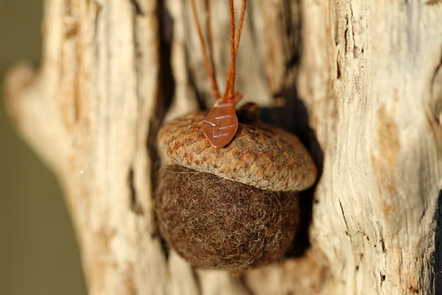 Needle felted acorn necklace