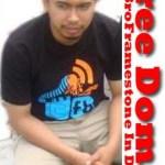 Free Domain By Broframestone.com