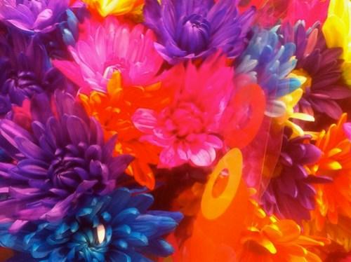 03.15.2011 Whoa!  Bright!
