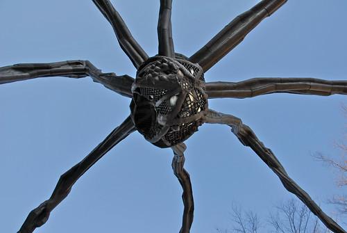 Roppongi Dali spider