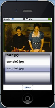 スクリーンショット(2011-03-27 0.05.26)