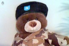 Day 78 - Task Force Member - Major Pain