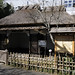 Ueno Zoo 恩賜上野動物園, Tokyo Japan 東京 日本