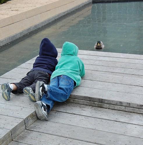 boys and duck, luray garden