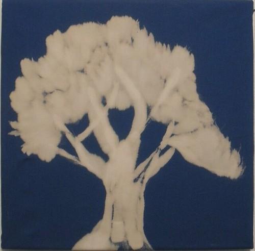 bleach tree