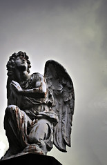 tu, ángel caído