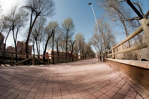 Paseo del Henares