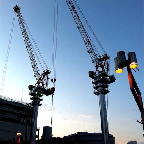 なんか清々しい朝だね!みんなー、( ^ω^)( -ω-)( _ _)おはよ! #crane #Osaka #morning