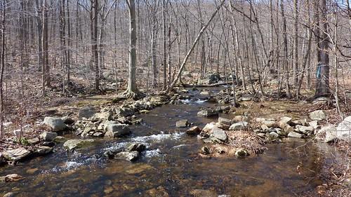 Bear Swamp Brook