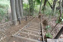 鴨居原市民の森(Z坂、Kamoihara Community Woods)