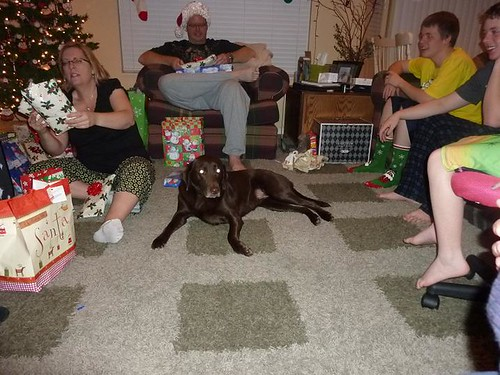 Christmas 2010 Coco in the middle of opening gifts