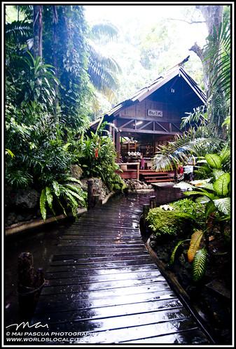 Davao Pearl Farm 019 copy