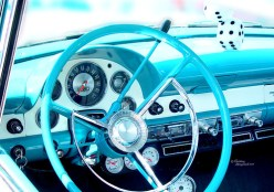 Blue Thunderbird Dashboard