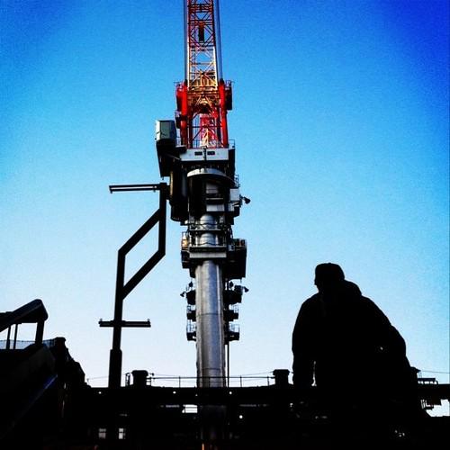 階段を登ると、そこに居た。 こんちゃー! あと半日、がんばろ~!v( ̄Д ̄)v イエイ #Osaka #Abeno #afternoon #crane