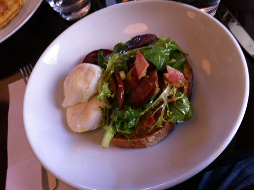 poached eggs with roast tomato, frisée & chorizo salad; sourdough toast (18.5) - bird cow fish, surry hills