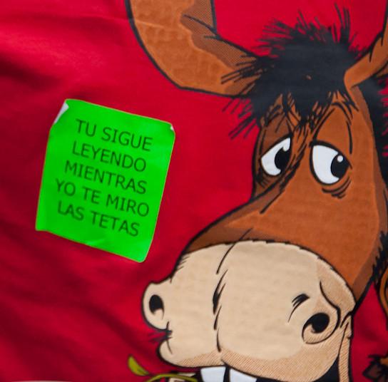 """Poesía sanjuanera: """"tu sigue leyendo mientras yo te miro las tetas"""""""