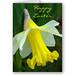 Easter Card Design - Yellow Daffodil