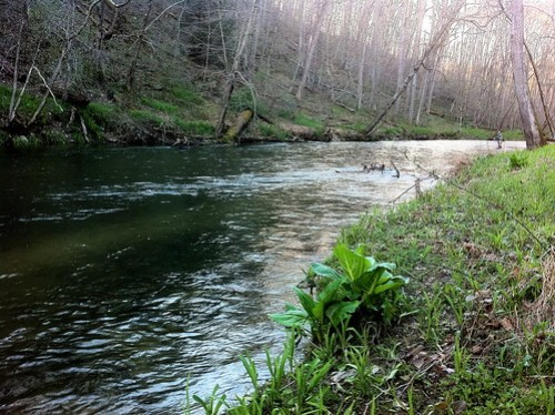 Gunpowder River Spring Flows are High and Clear
