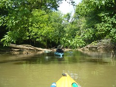 Saluda River Paddle-15