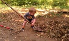 Ansel was a great little helper, today.