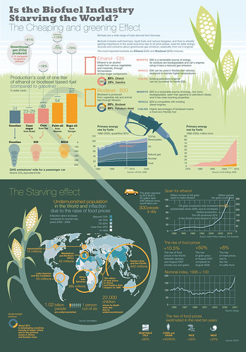 The fight for the fields: biofuels vs food by marcogiannini
