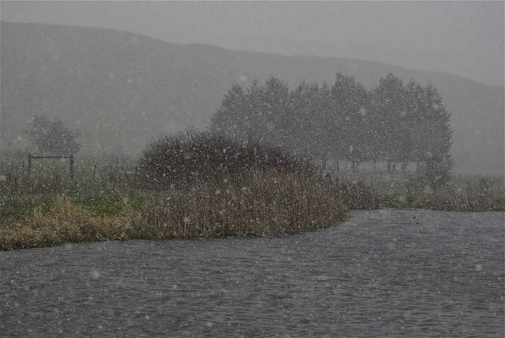 Snowstorm on the pond