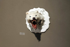 3rd Biennial Taxidermy show03