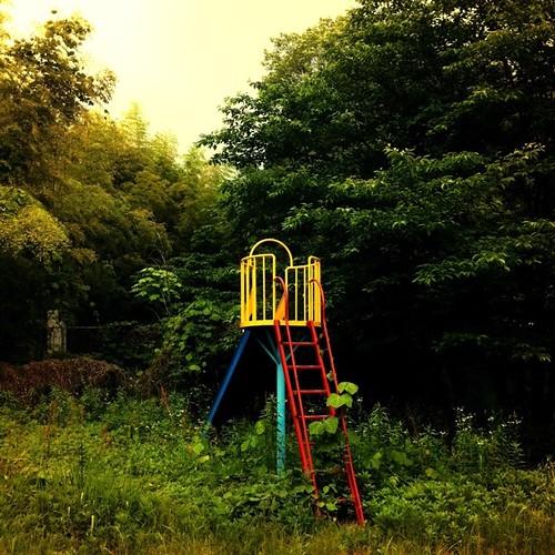 忘れ去られた滑り台。 #slide