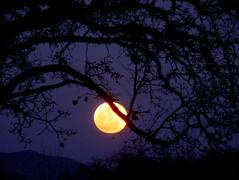 Full Moon over Margarita