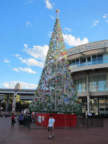 Christmas tree at Darling Harbour