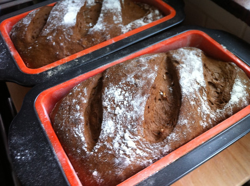 Loaves ready for the oven