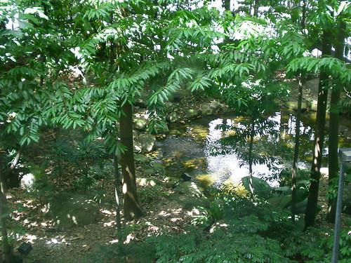 KLIA natural greenery