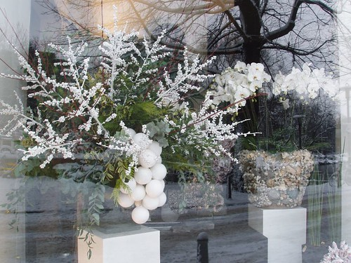 201012190076_Amsterdam-florist-reflections