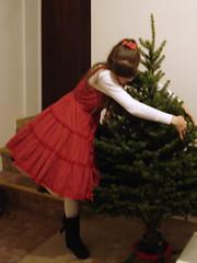 Yay, the Treeeeee~