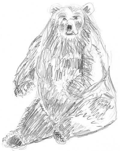 Sketch of a sitting bear