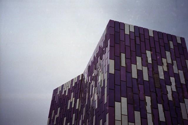Purple Rectangles