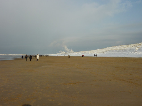 sea beach snow